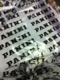 Panini Tour 17