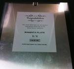 Panini America National Printing Plates 12