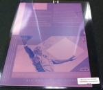 Panini America National Printing Plates 20