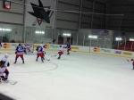 Panini America NHLPA Rookie Showcase 2