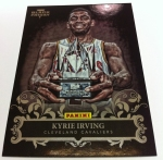 Panini America 2012 Black Friday Insert 13