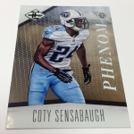 Panini America 2012 Limited Football Teaser (26)