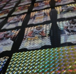 Panini America 2012 Prizm Football Finite Blacks (29)
