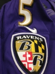 Panini America Baltimore Ravens Playoff Game-Worn (19)