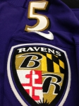 Panini America Baltimore Ravens Playoff Game-Worn (24)