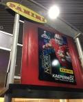 Panini America Super Bowl XLVII NFL Experience  (20)