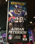 Panini America Super Bowl XLVII NFL Experience  (32)