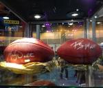 Panini America Super Bowl XLVII NFL Experience  (5)