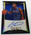 Panini America Select Preferred All-Star Weekend Preview Gallery (14)