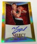 Panini America Select Preferred All-Star Weekend Preview Gallery (15)