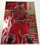 Panini America 2012-13 Select Basketball QC Part One (10)