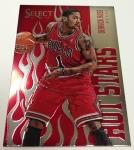 Panini America 2012-13 Select Basketball QC Part One (10)