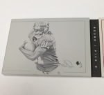Panini America 2012 Playbook Football RG III Gallery (11)
