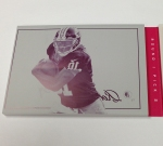 Panini America 2012 Playbook Football RG III Gallery (15)