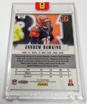 Panini Pylon First Week (22)