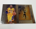 Panini America 2012-13 Brilliance Basketball Preview (7)