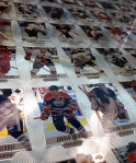 Panini America 2012-13 Rookie Anthology Hockey Preview (21)