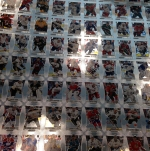Panini America 2012-13 Rookie Anthology Hockey Preview (42)
