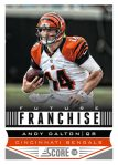 Panini America 2013 Score Football Future Franchise 7