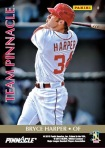 Panini America Team Pinnacle Harper