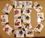 2013 NBA NHL Panini Wild Card (123)