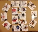 2013 NBA NHL Panini Wild Card (123)