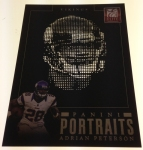 Panini America 2013 Elite Football Portraits (13)