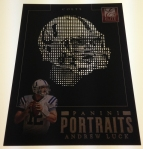 Panini America 2013 Elite Football Portraits (17)