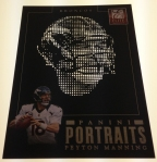 Panini America 2013 Elite Football Portraits (24)