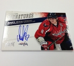 Panini America 2013 Fourth Fireworks Hockey (27)