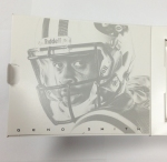Panini America 2013 Momentum Football QC (2)