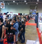 Panini America 2013 Fan Expo Canada (20)