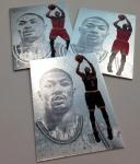 Panini America 2012-13 Intrigue Basketball QC (85)