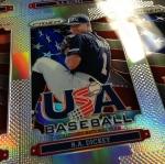 Panini America 2013 Prizm Baseball Sheets (14)