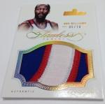 Panini America 2012-13 Flawless Basketball Jumbo Patches (55)