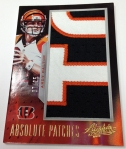 Panini America 2013 Absolute Football QC (126)