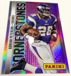 Panini America 2013 NFL Monster Box (17)