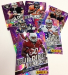 Panini America 2013 NFL Monster Box (31)