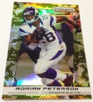 Panini America 2013 Prizm Football Parallels (50)
