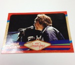 Panini America 2013 The Beach Boys QC (22)