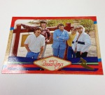 Panini America 2013 The Beach Boys QC (33)
