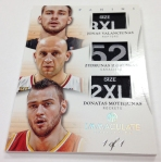 Panini America 2012-13 Immaculate Basketball Part 2 (22)