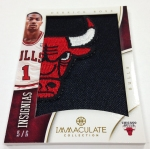 Panini America 2012-13 Immaculate Basketball Weekend Peek Part Three (25)