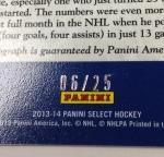 Panini America 2013-14 Select Hockey QC (74)