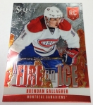 Panini America 2013-14 Select Hockey QC (88)