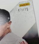 Panini America 2013 Prizm Perennial Draft Picks Teaser (16)
