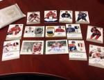 Panini America 2013-14 Dominion Hockey Packout Live Twitter (14)