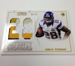 Panini America 2013 National Treasures Football Sneak Peek One (30)