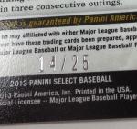 Panini America 2013 Select Baseball Teaser (57)