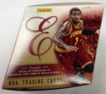 Panini America 2013-14 Elite Basketball QC (4)
